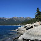 Tahoe &#x27;turtle&#x27;, Lake Tahoe, NV by Aggiegirl