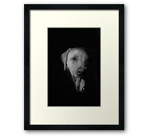 Yawning through the screen Framed Print