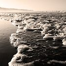 Bubbling In, Mon Repos Beach, Queensland, Australia by JCMPhotos