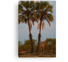 Giraffe Under Palm Trees Canvas Print