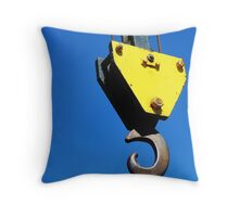 Why?  Why Not? Throw Pillow