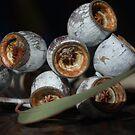 Gumnut Icon by Lozzar Flowers & Art