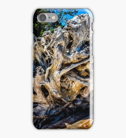 Drift Roots iPhone Case/Skin