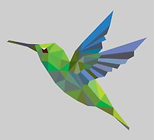 Humming bird lowpoly by tsign703
