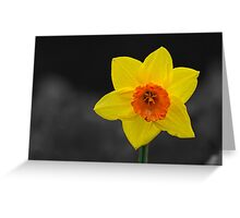 Yellow with a hint of Orange Greeting Card