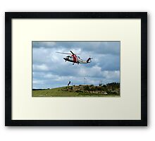 Catcher in your Need Framed Print