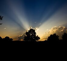 Beaming by Otto Danby II
