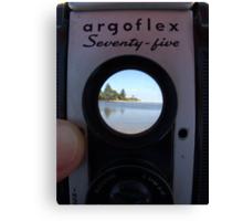 argoflex Seventy-five Canvas Print