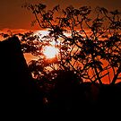 Shepherd's Delight, Red Sky at Night by bazcelt