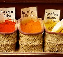 Spices by Giulio Bernardi