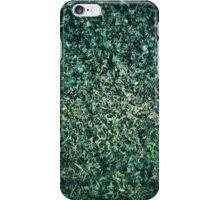 Summer grass iPhone Case/Skin