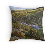 Reedy Creek, Mannum Falls Throw Pillow