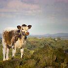 You Sure I'm Not a Goat? by Wulfrunnut