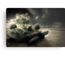 Life on the back of a shell Metal Print