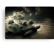 Life on the back of a shell Canvas Print