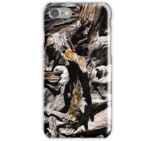Gnarly Root... iPhone Case/Skin