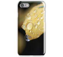 Raindrops on orange pansies iPhone Case/Skin
