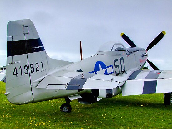 P51 Mustang - Shoreham Airshow 2010 by Colin J Williams Photography