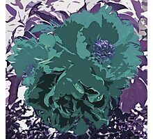 Unique Trio Of Flowers Abstract in Purple and Teal Blue  Photographic Print