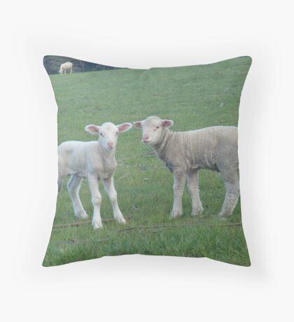 Baaa Lambs Throw Pillow