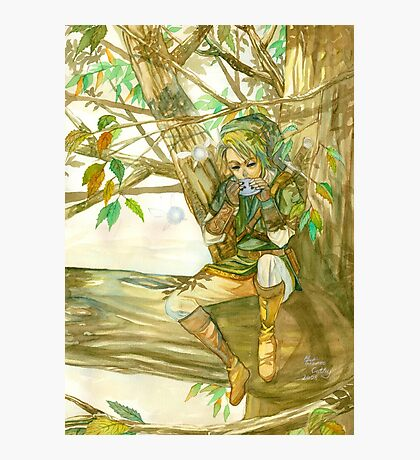 Peaceful Link Photographic Print