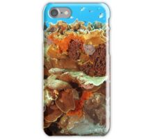 Plate Coral iPhone Case/Skin