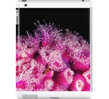 Jewel Anemone's- HMAS Perth iPad Case/Skin