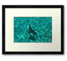 I'm Wild About You Framed Print