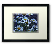 The Daisy Patch Framed Print