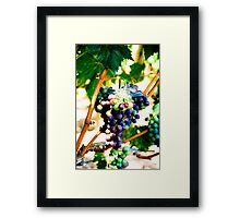 Grapes of Raph Framed Print