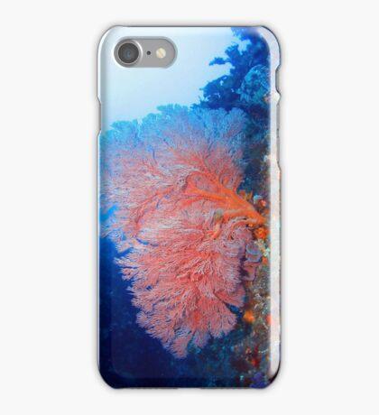 Fan Coral iPhone Case/Skin