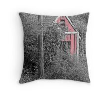 EQUIPMENT SHED Throw Pillow
