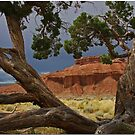 Red Hills Of Utah by Chet  King