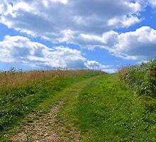 Coastal Path at Lyme Dorset UK by lynn carter