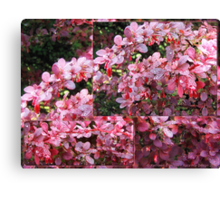 Colors of Summer - collage Canvas Print
