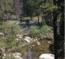 Stream in Yosemite by Noblesteed1a