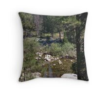 Stream in Yosemite Throw Pillow