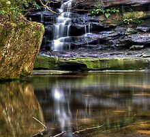 Somersby Reflection by Andrew Murrell