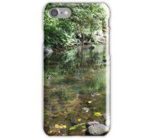 Renfrew Ravine - emerald backwater iPhone Case/Skin
