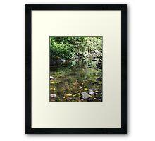 Renfrew Ravine - emerald backwater Framed Print