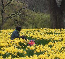 A Jack among the daffodils by rualexa