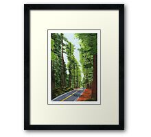 On The Avenue Framed Print