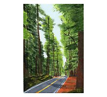 On The Avenue Photographic Print