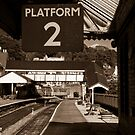 Platform 2 by Michael Hadfield