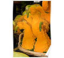 Gorgeous Gourds Poster