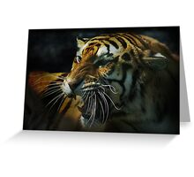 Snarling Tiger  Greeting Card