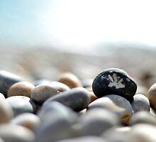 Beach Stones by dan  brighton