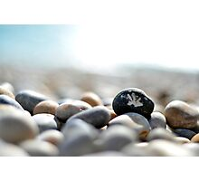 Beach Stones Photographic Print