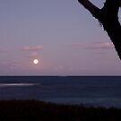 Moon rise by Adam  Davey