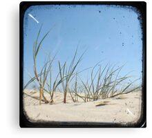 Grassy Dunes - TTV #1 Canvas Print